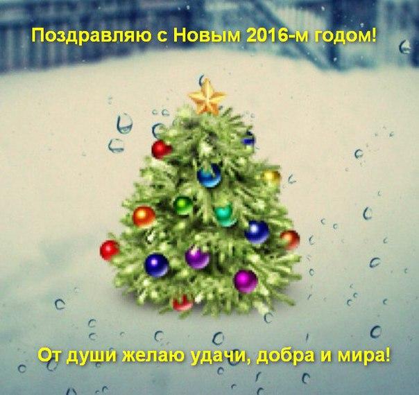 """""""Голый"""" новый год в сауне."""