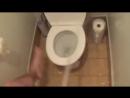 Как люди ходят в общественный туалет