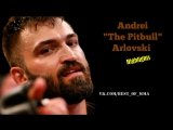 Andrei The Pitbull Arlovski Highlights