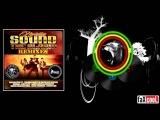 Navigator - Sound The Alarm (feat. Skarra Mucci &amp Bassface Sascha) Brian Brainstorm RMX