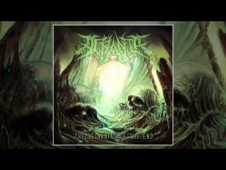 Acrania - Auctioneer Of Depravity (Cover)
