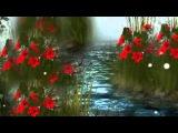 Страна любви-Автор ролика-Валентина Пескова
