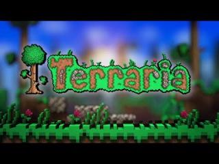 Terraria #8 Баг