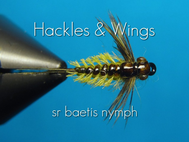 Fly Tying Baetis Nymph (SR) | Hackles Wings