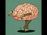 Что убивает наш мозг Вот что происходит на радио ЗВЕЗДА. 12.02.2016