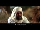 История про мальчика и Али Ибн Абу Талиба да будет доволен им Аллах