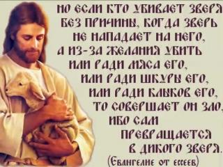 вещи что говорит библия об убийстве человека человека