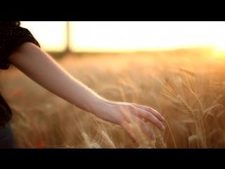 Девушка идет по полю и трогает колосья