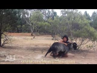 Суровый мужик ловит диких животных голыми руками