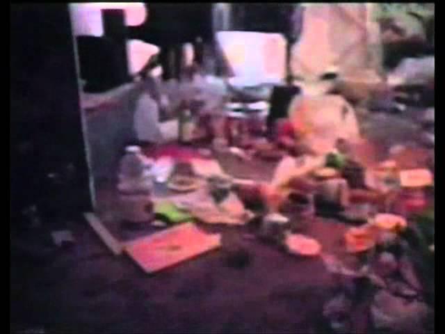 Documentary Stuff John Frusciante, Timothy Leary