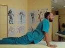 Упражнения при грыже шейного и поясничного отдела позвоночника, Exercises with spinal hernia