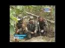 Обломки самолётов времён ВОВ обнаружены в дятьковском лесу