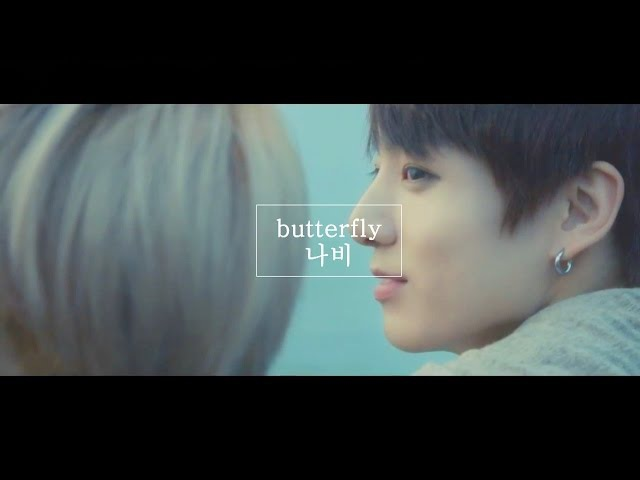 [방탄소년단] 나비(butterfly) MV