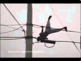 Man goes crazy and dance on top of high-voltage wire