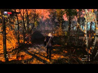 The Witcher 3 Wild Hunt Xbox One Gameplay 1080p 60fps