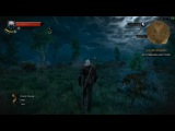 The Witcher 3 Wild Hunt PC Gameplay 1080p 60fps ULTRA SETTINGS Part 2