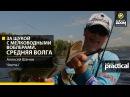 За щукой с мелководными воблерами Средняя Волга Часть 1 Anglers Practical