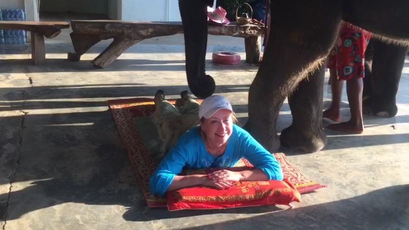 Слоновий массаж 😂