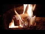 Mandragora Scream - Ghost Of Swan