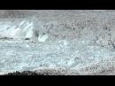 CHASING ICE captures largest glacier calving ever filmed - OFFICIAL VIDEO