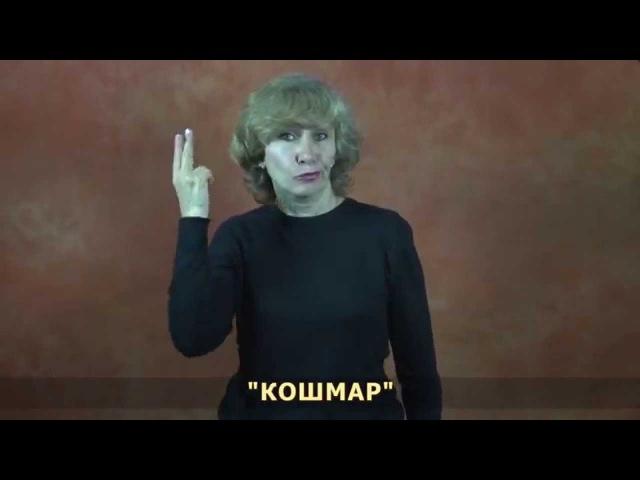 Наиболее частотные жесты, распространенные идиомы, выражение времени, грамматические маркеры