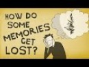 How memories form and how we lose them - Catharine Young