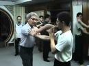 八步螳螂拳 8 Step Praying Mantis 反背掌應用 一招化五招實作