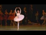 Yelena Yevseyeva Dulcinea variation Don Quixote Елена Евсеева