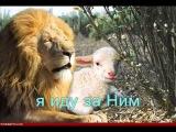 Я маленькая овечка  По горам высоким...