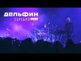 Дельфин  Dolphin  - Серебро (Акустика live)