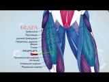 Анатомия мышц Физиология мышц Как работают мышцы - YouTube