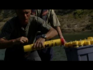 Эпизод 3 — Рыба-аллигатор
