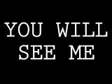 YOU WILL SEE ME - dan le sac vs Scroobius Pip