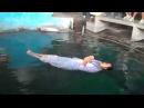ВОДНАЯ ЛЕВИТАЦИЯ WATER levitation