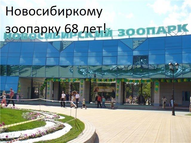 Новосибирскому зоопарку 68 лет! | Трейлер!