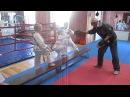 Тренировка тхэквондо младшая группа часть 2