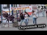 Огромный Паук на Улице Города  Big Scary Spider Prank (Реакция 28)