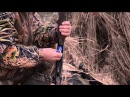 Охота на гуся весна 2013