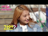 [SHOW] 200515 #Sistar on Idolic TV The Ranking is Up to Me! = - Bora's Favorite Instant Food