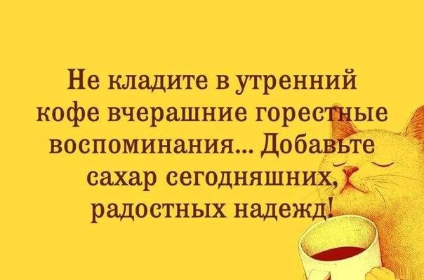 https://pp.vk.me/c628531/v628531646/3a6b6/NJb8g8xUO60.jpg