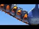 Мультфильм. For the Birds О птичках от Pixar