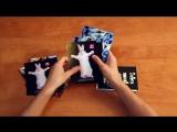 Печать и изготовление открыток Типография «Самурай» Wolf™