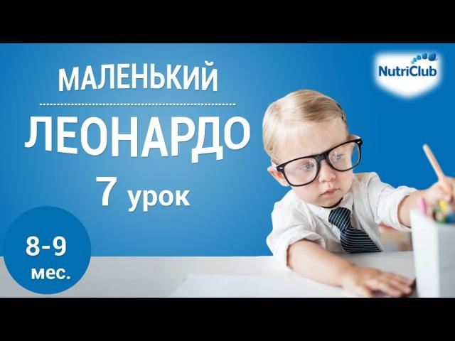 Интеллектуальное развитие ребенка 8 9 месяцев по методике Маленький Леонардо Урок 7