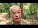 Вьетнам Война 16 выпуск 1080p HD Мир Наизнанку