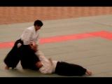 Aikido - Suzuki Toshio Sensei - Nage Waza