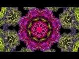 Dub Reggae kaleidoscope visual