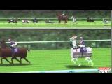 Crazy Japan Horse Racing