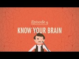 Meet Your Master Getting to Know Your Brain - Crash Course Psychology #4