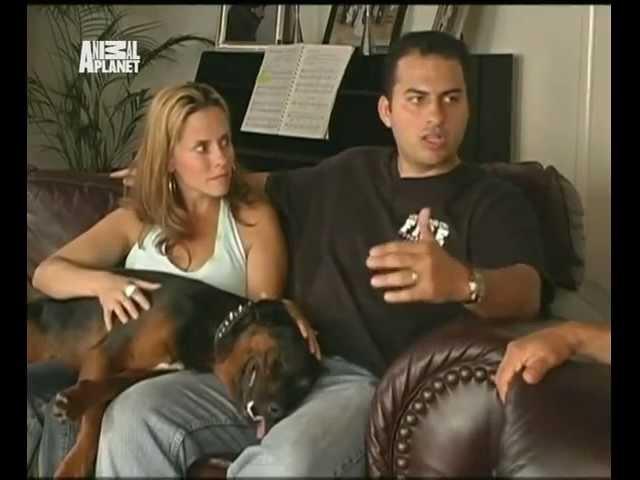 Переводчик с собачьего (сезон 1 серия 03 из 26 2004)