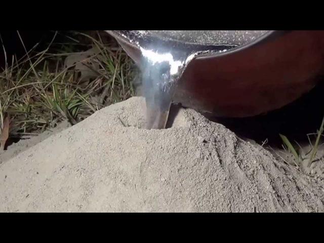 Echando en una colonia de hormigas fuego con aluminio fundido